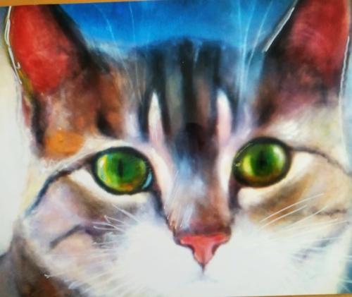 il gatto opportunista