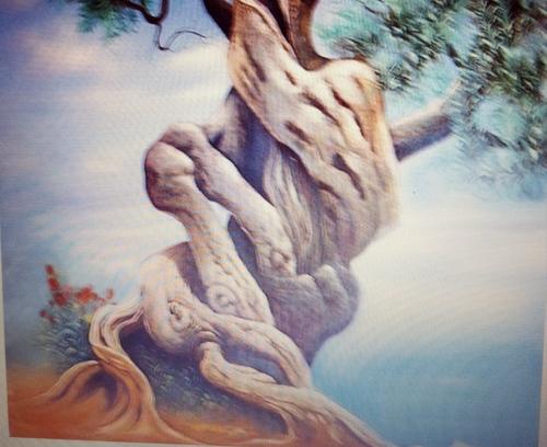 il tronco